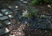 New Haven Urban Garden, Riverstones